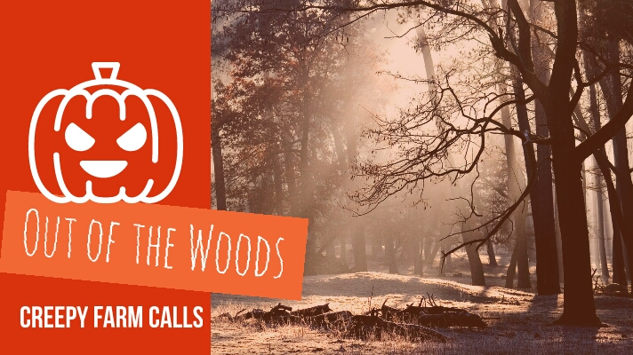 Out of the Woods – Creepy Farm Call#1